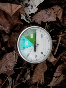 We achieved new high temp records in our compost pile.