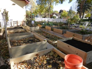 The latest installation of raised beds